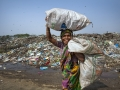 The women pick recyclables plastic materials to sell the Market for their livelihood in waste land, Sylhet, Bangladesh.